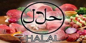 Tips Mencari Makanan Halal Di Denpasar Bali
